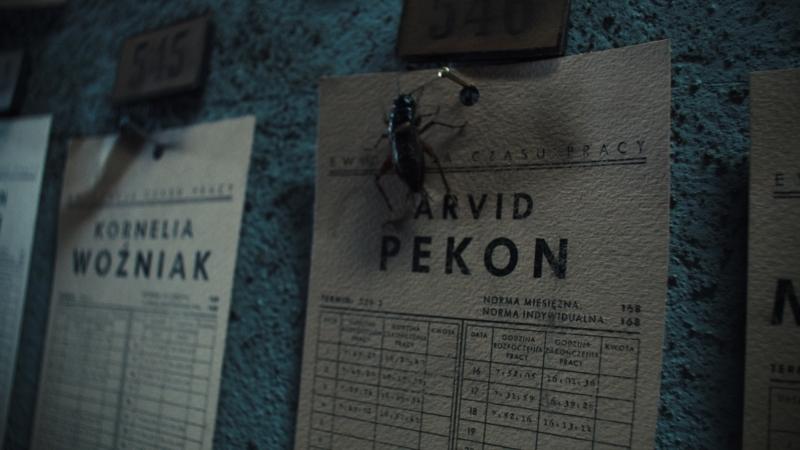 Kim jest Arvid Pekon?